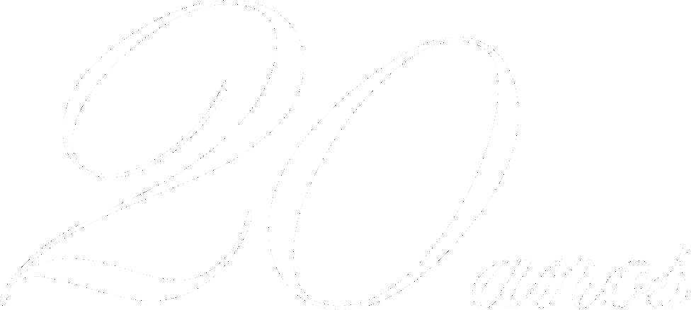 20 anos grupo fibra forte
